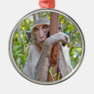 Monkey Silver-Colored Round Decoration
