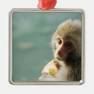 Monkey Silver-Colored Square Decoration