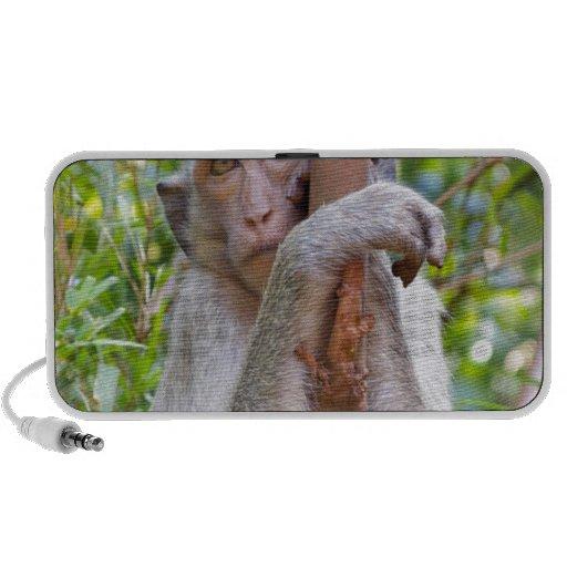 Monkey iPhone Speakers