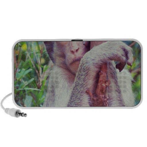 Monkey Laptop Speakers