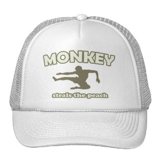 Monkey Steals the Peach Hats