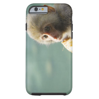 Monkey Tough iPhone 6 Case