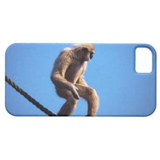 monkey walking on rope iPhone 5 cases
