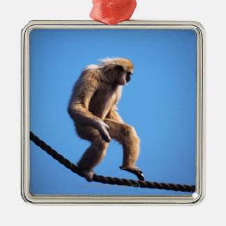 monkey walking on rope Silver-Colored square decoration