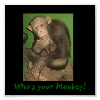 monkey Who s your Monkey Print