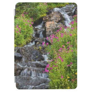 Monkeyflowers Along Lunch Creek In Glacier iPad Air Cover