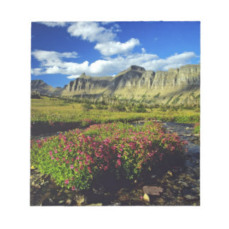 Monkeyflowers at Logan Pass in Glacier National Notepad