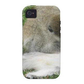 monkeys iPhone 4/4S cases