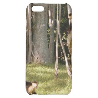 Monkeys iPhone 5C Cover