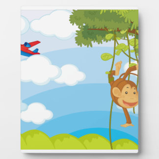 monkeys display plaque