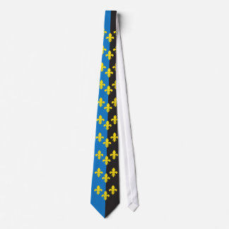 Monmouthshire Flag tie