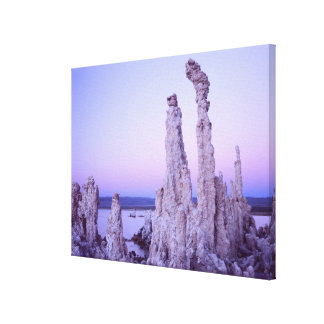 Mono Lake Reserve. California. USA. Tufa Canvas Print