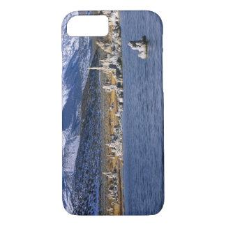 MONO LAKE TUFA STATE NATURAL RESERVE, iPhone 8/7 CASE