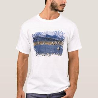 MONO LAKE TUFA STATE NATURAL RESERVE, T-Shirt
