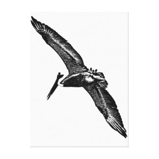 """Monochromatic """"black and white"""" pelican photo art stretched canvas print"""