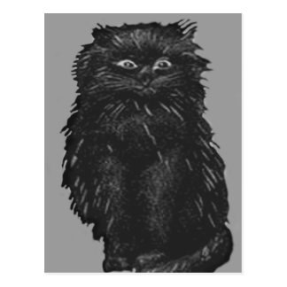 Monochrome Black Cat Postcard
