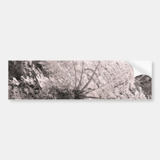 Monochrome Tree Fern Bumper Sticker