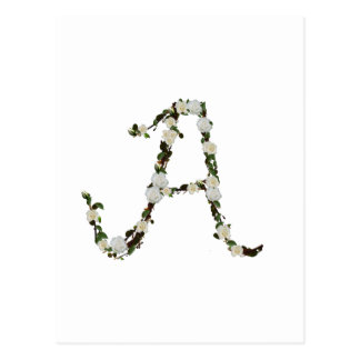 Monogram in white rose wreath postcard