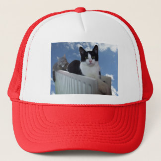Monorail Cat - Radiator Edition Baseball Cap