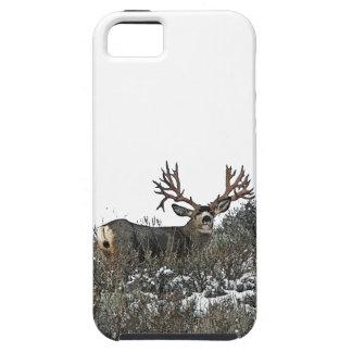 Monster mule deer 2 iPhone 5 covers