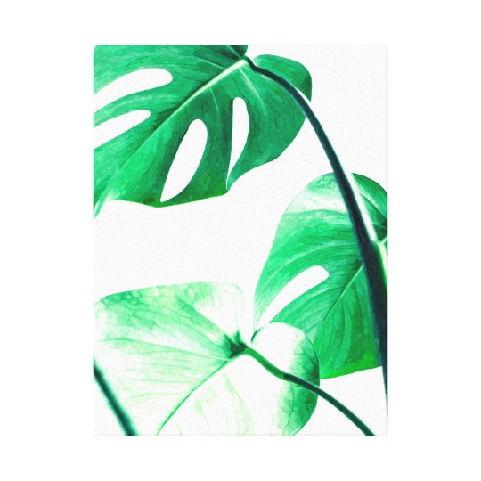 monstera leaves palm tropical modern watercolor canvas print