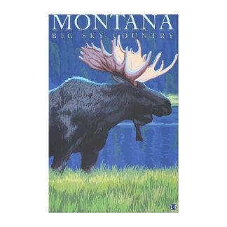Montana -- Big Sky CountryMoose in Moonlight Canvas Print