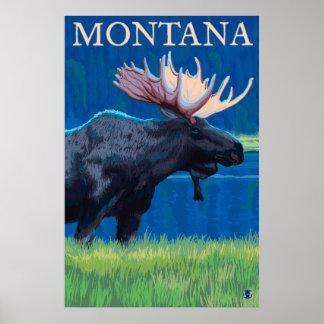 Montana - Moose Poster