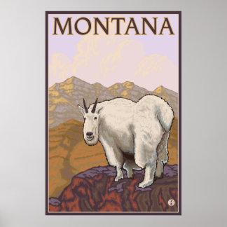 Montana - Mountain Goat Poster