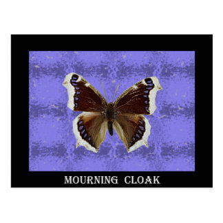 Montana Mourning Cloak Butterfly Postcard
