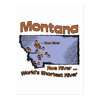 Montana MT US Motto ~ Worlds Shortest River Postcard