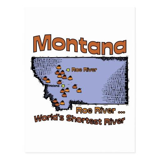 Montana MT US Motto ~ Worlds Shortest River Postcards