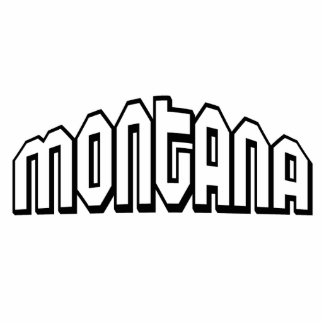 Montana Standing Photo Sculpture