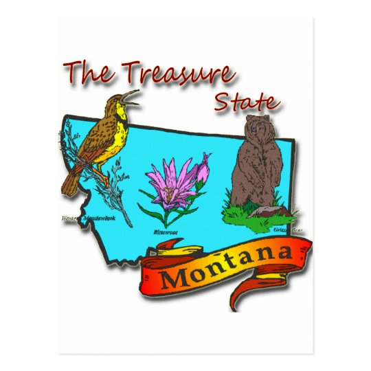 Montana Treasure State Bear Lark Flower Postcard