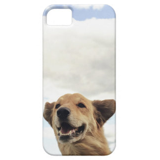 Montana, USA iPhone 5 Covers