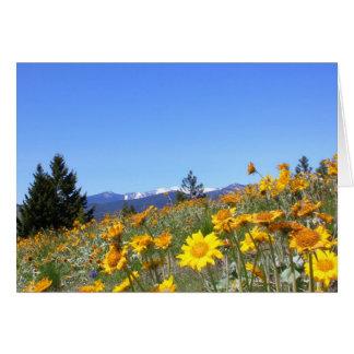 Montana Wildflowers Greeting Card