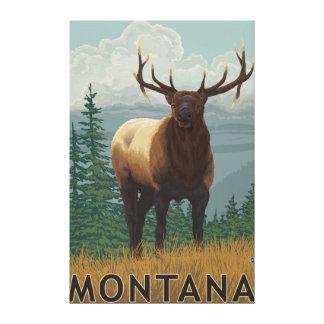 MontanaElk Scene Gallery Wrapped Canvas