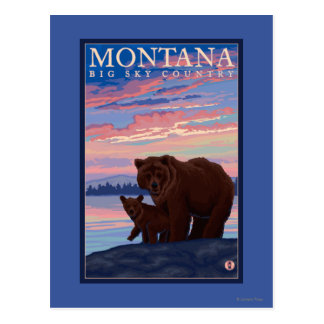MontanaMomma Bear and Cub Vintage Travel Postcard