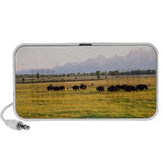 Montana's Bison Herd Mini Speaker