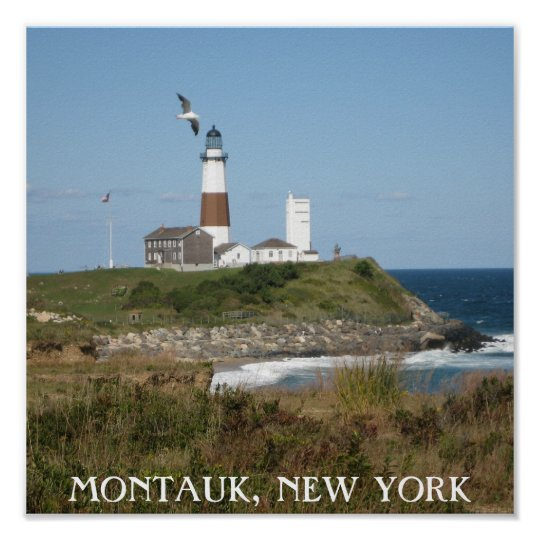 Montauk Lighthouse Seagull Love Poster