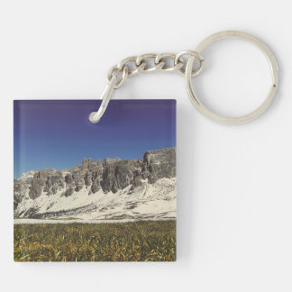 Monte Metformin Double-Sided Square Acrylic Key Ring