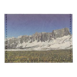 Monte Metformin Tyvek® Card Wallet