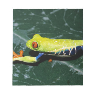 Monte Verde, Costa Rica. Red-eyed tree frog Notepad