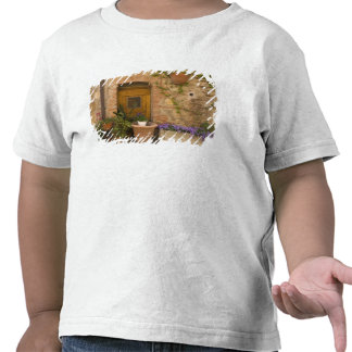 Montefollonico, Val d'Orcia, Siena province, 2 T Shirts