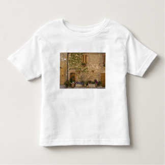 Montefollonico, Val d'Orcia, Siena province, Shirt