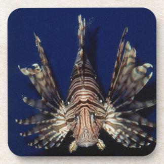 Monterey Bay Aquarium, Lionfish Coaster