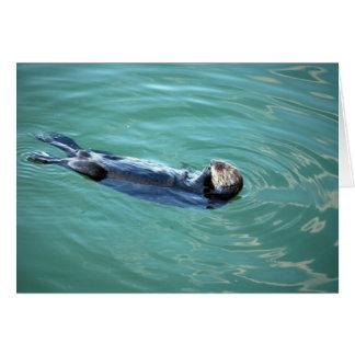 Monterey Bay Sea Otter Greeting Card