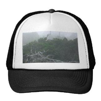 Monterey Fog Mesh Hats