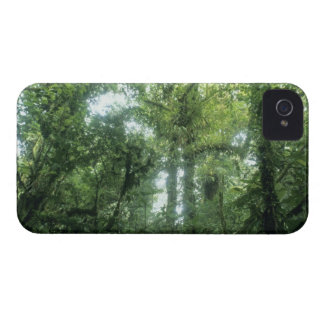 Monteverde Cloud Forest, Costa Rica. iPhone 4 Case-Mate Cases