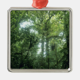 Monteverde Cloud Forest, Costa Rica. Christmas Ornament