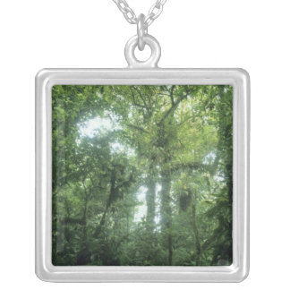 Monteverde Cloud Forest, Costa Rica. Silver Plated Necklace